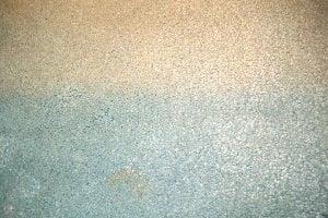 Carpet Colour Fading