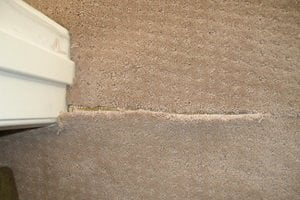 Most Common Carpet Problems And Their Solutions